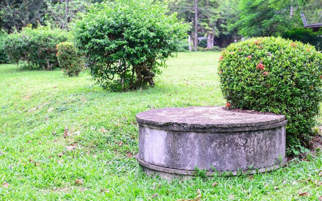 Don't Flush These Items If You Have a Septic Tank